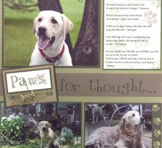 Dog scrapbook page by gunnergirlchase - Cards and Paper Crafts at Splitcoaststampers Dog Scrapbook Layouts, Paper Bag Scrapbook, Scrapbooking 101, Scrapbook Sketches, Scrapbook Cards, Dog Heaven, Photo Layouts, Doge, Making Ideas