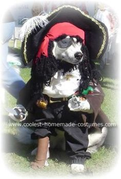Captain Pasha the Pirate Costume... This website is the Pinterest of pet halloween costumes