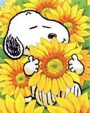 Take time to stop and smell the flowers. Snoopy