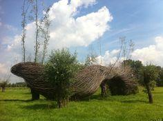 The Willowman in the Kalkense Meersen Belgium