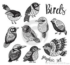 Doodle Drawing, Doodle Art, Bird Drawings, Easy Drawings, Bird Doodle, Images Kawaii, Black And White Birds, Bird Illustration, Illustrations