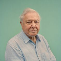 Sir David Attenborough returns to British TV screens on December 30th with his latest documentary series 'The Great Barrier Reef' and some 60 years since he first filmed there for the BBC. @jessamy.calkin interviewed him for last Saturday's #telegraphmag and @tobycoulson shot the portrait. #davidattenborough #greatbarrierreef @bbcone #naturalist #environmentalist #portrait #portraitphotography by telegraph http://ift.tt/1UokkV2