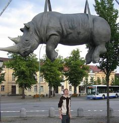 Hanging Rhino, Potsdam Located at Luisenplatz Square in Potsdam, Germany is this statue of a sad rhino hanging over the passerby.