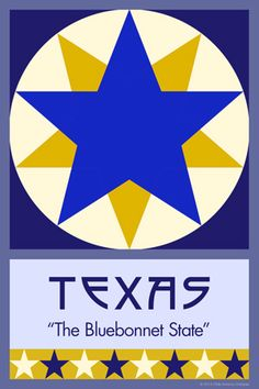 Olde America Antiques | Quilt Blocks | National Parks | Bozeman Montana : 50 STATE QUILT BLOCK SERIES - TEXAS - version 2