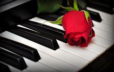 Piano Care Tips - Fix My Piano