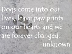 Dogs Come Into Our Lives Leave Paw Prints On Our Hearts And We