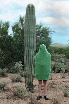 surreal real life travel photo spontaneous funny picture thank goodness he wore his green jumper that day cactus ? Urbane Kunst, Bizarre, Go Green, Green Sage, Make Me Smile, Camouflage, Creepy, Art Photography, Photoshop