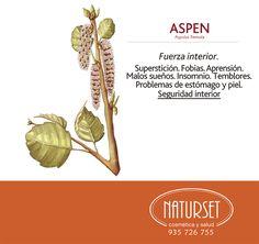 Aspen: Fuerza interior