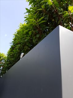 Paul Newman Landscapes, design and construct truly stunning contemporary gardens and roof terraces. Paul Newman, Water Features, Portuguese, Balcony, Terrace, Grass, Planters, Landscape, Garden