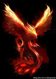 Image result for phoenix rising tattoo