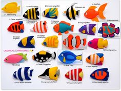 coral fishes, ocean fishes, angelfish, butterflyfish, anthias, tang, clownfish, triggerfish, parrotfish, mandarinfish, goldfish, moorish idol