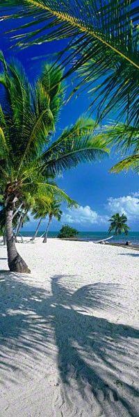 On the Beach - Islamorada, Florida