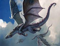Types Of Dragons, Cool Dragons, Dragon Illustration, Dragon's Lair, Dragon Artwork, Dragon Drawings, Dragon Pictures, Dragon Images, Beautiful Dragon
