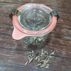 Today is Weck Wednesday. Get off all Weck jars. They are great for saving seeds for next season. Weck Jars, Saving Seeds, Omega Watch, Wednesday, Leather, Accessories, Seed Storage, Jewelry Accessories