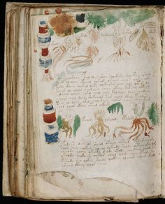 One of the most mysterious paranormal documents from the middle ages is commonly known as the Voynich Manuscript. Voynich Manuscript, Medieval Manuscript, Illuminated Letters, Illuminated Manuscript, Society Of Jesus, Ancient Scripts, Beautiful Handwriting, Late Middle Ages, Calligraphy Handwriting