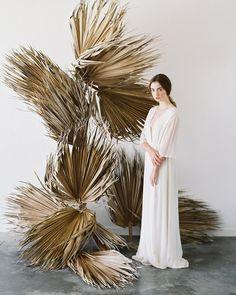 jurassic palms.