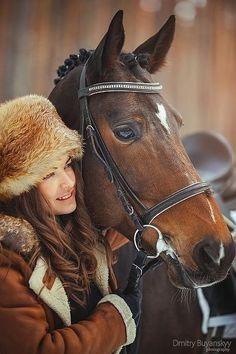 Sweet horse portrait