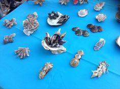 Le mie gioie ... Creazioni con conchiglie di mare