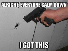 calm meme | alright, everyone calm down Oct 04 04:55 UTC 2012