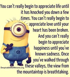 Minions - . . . Once you've walked through these valleys, the view from the mountaintop is breathtaking.