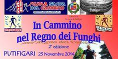 IN CAMMINO NEL REGNO DEI FUNGHI – PUTIFIGARI – DOMENICA 23 NOVEMBRE 2014