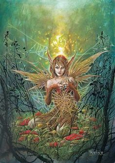 I found 'The Cobweb Fairy Art Poster : Wiccan Supplies WitchCraft Supplies Wiccan Store-Moons Light Magic' on Wish, check it out!