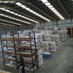 Nuestras #instalaciones llenas para dar un #servicio excepcional a nuestros #clientes, en #stok todas las #series de nuestro #catalogo tanto de #porcelanico como de #gres siempre en stok continuo. www.innovatile.es