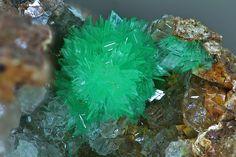Annabergite,  Ni3(AsO4)2•8(H2O), Kamariza, Lavrion, Greece. Fov 3.8 mm. Photo Hannes Osterhammer