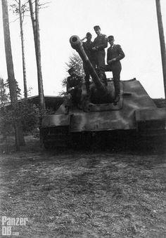 """Panzerjäger für 8,8 cm PaK 43/3 auf Fgst. Panther (Sd.Kfz. 173) """"Jagdpanther"""