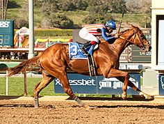 Dortmund Cruises Wire-to-Wire in San Felipe Preakness Winner, Santa Anita Park, Five In A Row, Sport Of Kings, Reportage Photo, Big Brown, Thoroughbred Horse, Racehorse, Horse Racing
