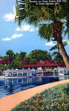 Starting on glass bottom boat trips - Silver Springs, Florida (Photo: State Archives of Florida, Florida Memory, http://floridamemory.com/items/show/163892)