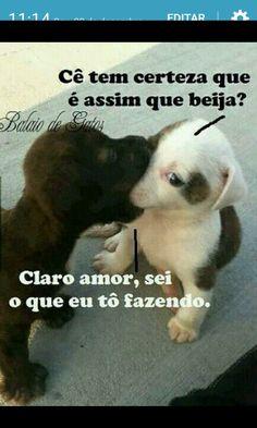 Cleusa Maria Rocha Fernandes - Google+