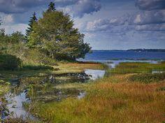 machias maine | East Machias, Maine | Flickr - Photo Sharing! Peaks Island, Where The Heart Is, Pilgrim, New Hampshire, Rhode Island, Coastal Living, Connecticut, Vermont, Massachusetts