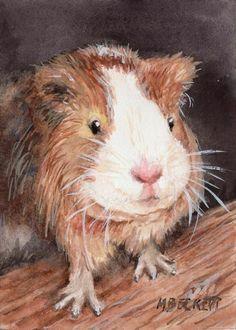 ACEO Original Painting Guinea Pig animals pets rodent furry cavy #Impressionism Pet Rodents, Watercolor Paintings, Original Paintings, Artist Trading Cards, Guinea Pigs, Impressionism, Etsy Seller, The Originals, Pets