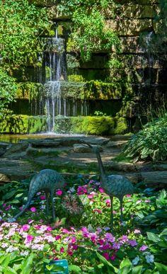 Dubuque Arboretum and Botanical Gardens - Two children's themeed gardens plus playground Abandoned Prisons, Dubuque Iowa, Gardens Of The World, Public Garden, Lush Garden, Exotic Plants, Winter Garden, Botanical Gardens, Beautiful Gardens