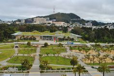 Golden Gate Park | San Francisco's Green Spaces: Golden Gate Park