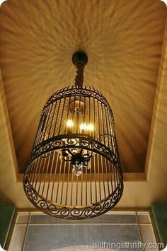 Birdcage lighting