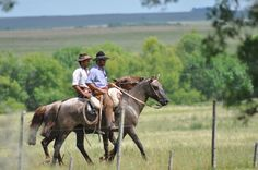 volviendo Gaucho, Horse Adventure, Rio Grande Do Sul, Fauna, Beautiful Horses, Wild West, Country, Rodeo, Strength