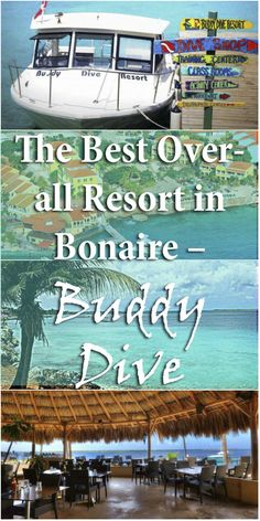 The Best Over-All Resort in Bonaire - Buddy Dive  #Bonaire #Diving #Caribbean