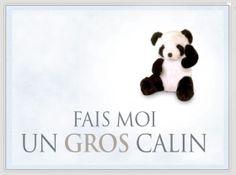 Envoyez des cartes virtuelles gratuites câlines pour la Journée des câlins !