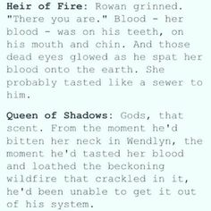 tbh I wasn't too fond of Rowan at first in hof but by the end I loved their friendship. never exactly shipped them, but great as friends, partners, carranam. at this point I still don't ship them entirely but whatever makes Aelin happy. Aelin Ashryver Galathynius, Celaena Sardothien, Throne Of Glass Books, Throne Of Glass Series, Assassin, Rowan And Aelin, Crown Of Midnight, Empire Of Storms, Sarah J Maas Books