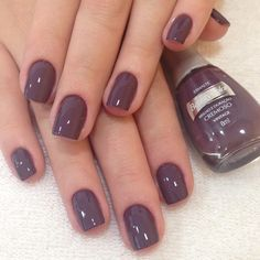 """Receive fantastic ideas on """"gel nail designs for fall"""". They are offered for you on our web site. Pretty Nail Colors, Spring Nail Colors, Gel Nail Colors, Fall Gel Nails, May Nails, Love Nails, Nails Polish, Girls Nails, Super Nails"""
