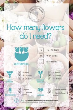 The no fuss flower calculator. How many flowers do I need?