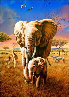 [Visit to Buy] OLY Diamond painting Forest elephants Diy Diamond Drawing crafts Needlework round diamond Mosaic pasted Diamond embroidery Elephant Family, Elephant Love, Elephant Art, Elephant Tattoos, African Elephant, African Safari, Cross Paintings, Animal Paintings, Elephant Paintings