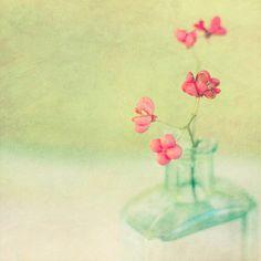 Teal vase by borealnz.
