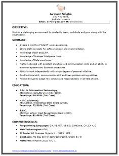 Professional Curriculum Vitae / Resume Template For All Job Seekers Sample  Template Of An Excellent BSC