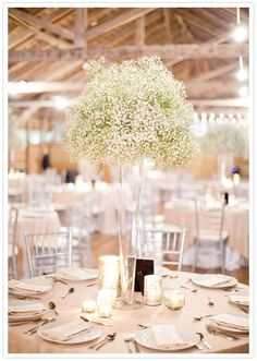 Baby's breath centerpieces - tall enough to add height, but not block people's faces!