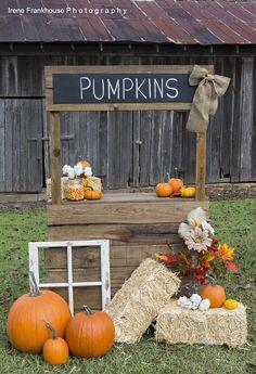 Photography Prop Pumpkin Stand