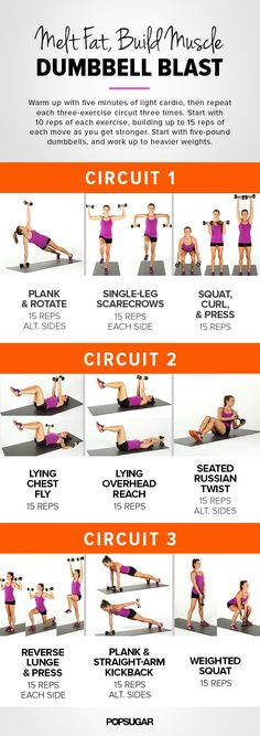 Add dumbbells to your fitness routine and build some metabolism-boosting muscle while toning your entire body. No muscle is left untouched. The more often and consistently you lift, the more you will be able to lift!  The best way to weight loss in 2016! - Look here! #weightlossrecipe #weightlosefast #weightlosesmoothies #weightlosemealplan