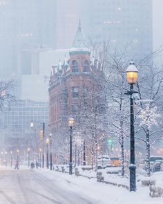 Winter in Toronto, Canada 🇨🇦 Winter Szenen, I Love Winter, Winter Magic, Winter Christmas, Winter White, Landscape Photos, Landscape Photography, City Landscape, Winter Landscape